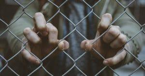 Asylum | Asilo